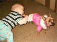 """孩童与动物爆笑""""互咬""""瞬间_内涵图片"""