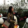 香港女首富甘比(陈凯韵)晒礼物照 感谢对方支持_娱乐组图