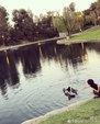 林志颖夫妇带Kimi去公园玩耍 萌娃水边与鸭子们玩耍_娱乐组图