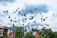 泰国风光摄影 享受异国他乡的宁静时光_都市景观