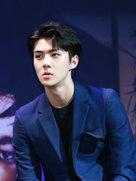 EXO接受电台采访 粉丝称:最佳屏幕男友-韩国男明星