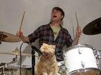 爆笑潮流猫猫演绎高中生生活-雷人恶搞