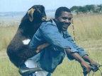 来自非洲原始部落让你捧腹大笑的场景-内涵图片