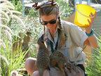 澳动物园准备圣诞美食 动物乐享大餐-猎奇图片
