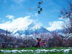 藏族摄影踏雪寻梅摄影写真 网友赞