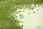 奔流不息 江河风景摄影作品欣赏_图赏