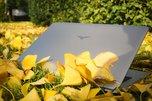 海尔凌越5000图赏:银杏叶下的银色本_新品图赏