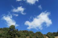 行走的记忆—云南高黎贡山自然保护区行