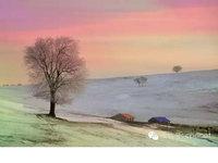 黄伟雄——乌兰布统草原的冬天
