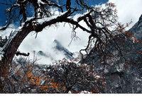 雪域仙境-四姑娘山