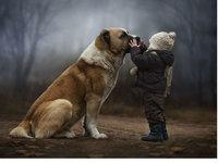 绝对治愈系 动物和孩子的快乐时光