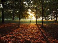 美丽的秋天风景摄影
