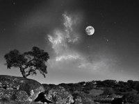 27张漂亮的黑白风光摄影作品
