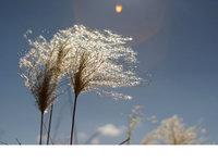 10张精美风景照片——自然界中的主要元素