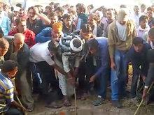 印度老虎掉入30米深井 吸引村民围观