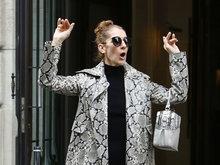 席琳迪翁身着蛇皮大衣配同款蛇皮高筒靴现身街头