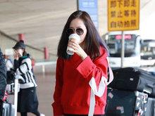 张靓颖,北京,粉丝,八卦爆料,国内女明星,