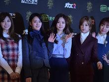 APINK,女团,韩国女团,APINK组合,人气偶像,