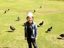 林志颖夫妇带Kimi去公园玩耍 萌娃水边与鸭子们玩耍