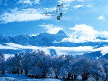 唯美雪景圖 美得可以屏住呼吸