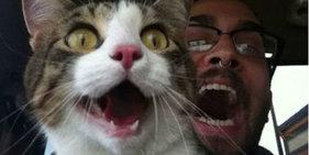 超囧恶搞狂人小心笑掉大牙