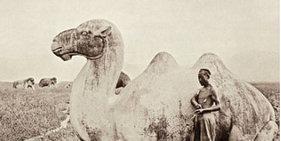 罕见影像:一个世纪前的中国