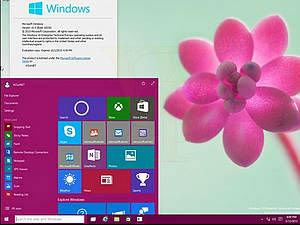 图集:Windows 10 Build 10036界面截图曝光