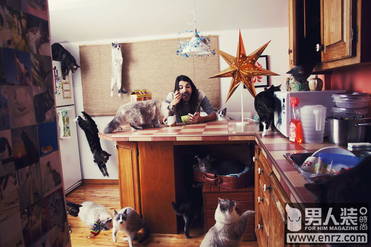 如痴如醉的创意观念摄影 爱猫者的天堂