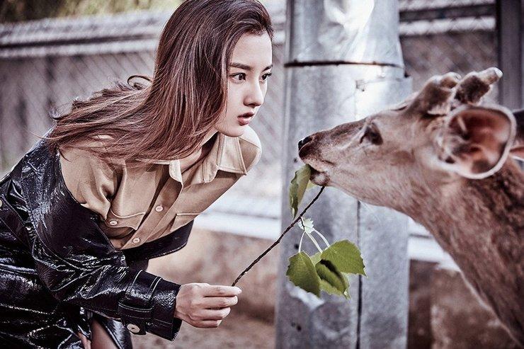 宋祖儿首登杂志封面 化身丛林少女喂食小鹿