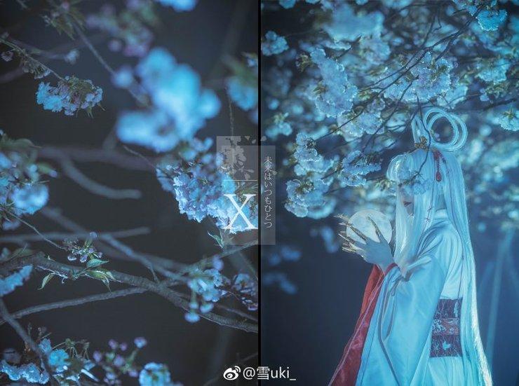 x战记 丁姬 夜景樱花高清chinajoy摄影