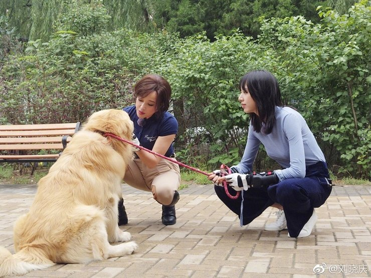 62岁刘晓庆穿制服上围傲人 牵狗狗画面非常有爱
